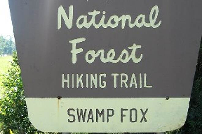 Swamp Fox Passage (Palmetto Trail) Trailhead Sign Good parking lot about 1/4 mile northeast of Steed Creek Road.