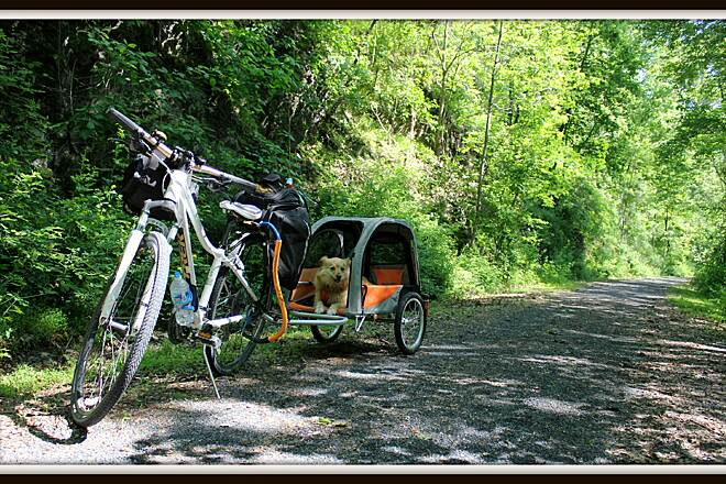 Swatara Rail-Trail A Dogs Life Can it get any better then this?