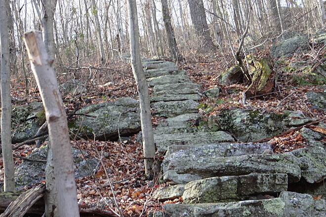 Switchback Railroad Trail Miner's stairs A hidden jem on the upper path to Mount Pisgah, blink and you'll miss them!