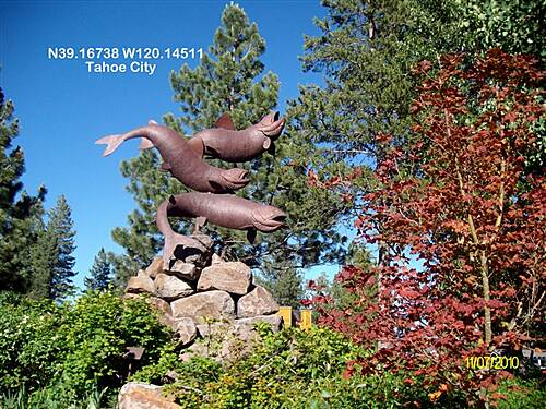 Tahoe Trailways Bike Path Tahoe City Fish Sculpture.