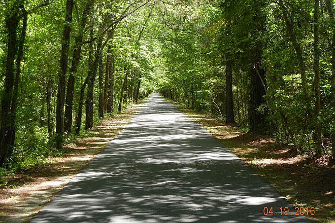 Tallahassee-St. Marks Historic Railroad State Trail St Marks  Beautiful shady trail!