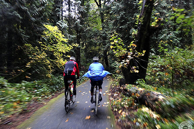 Terwilliger Trail Terwilliger Trail Heading up the Terwilliger Trail from State Street in Lake Oswego. Photo taken by www.cyclingportland.com