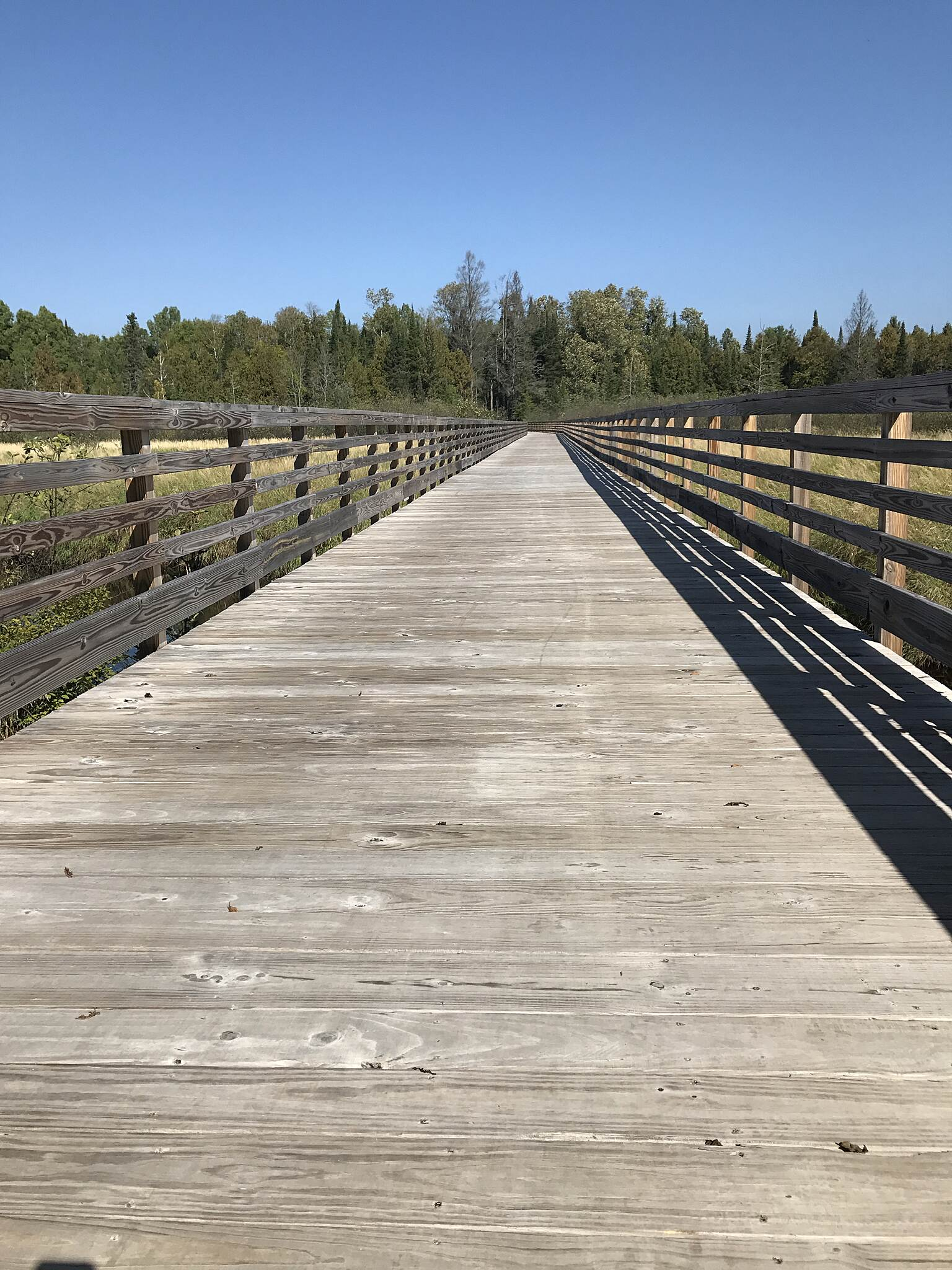 Three Eagle Trail Four Women Boardwalk