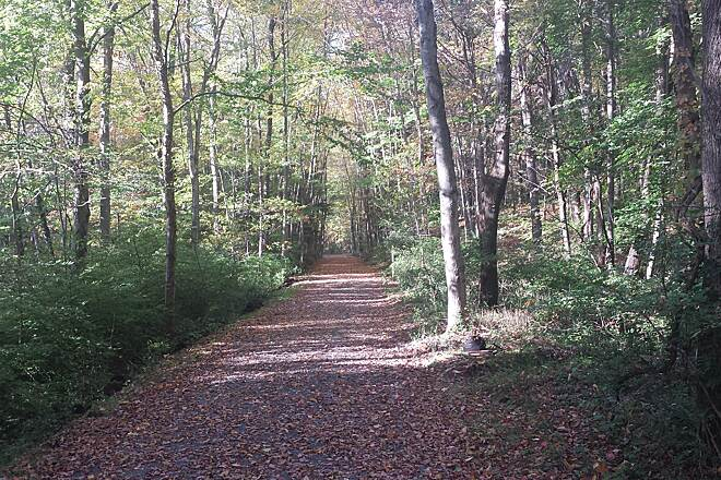 Trolley Trail (PA) Green in Fall