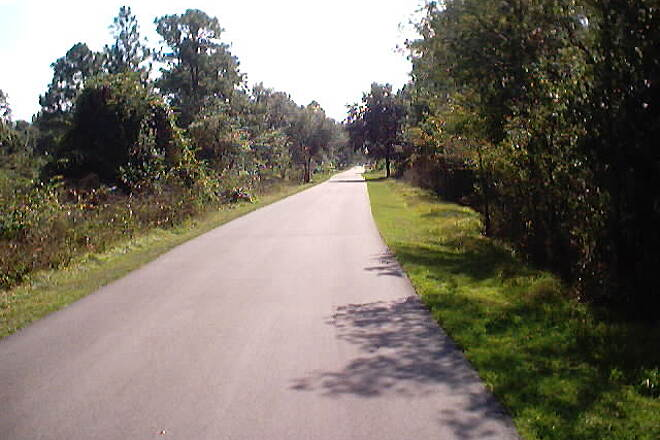 Upper Tampa Bay Trail Trail Scene