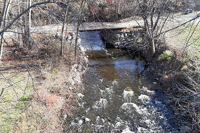 Wallkill Valley Rail Trail looking east over plattekill bridge This shot shows looking east from the plattekill Gorge bridge overlooking a stream.