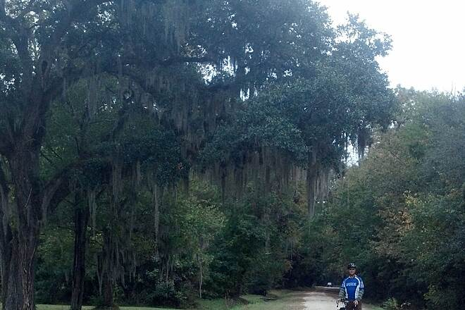 West Ashley Greenway West Ashley Greenway Spanish Moss overhangs the West Ashley Greenway, near Charleston SC.  This rail-trail has a stone-dust surface and is part of the East Coast Greenway.  Photo by Bethel Paris.