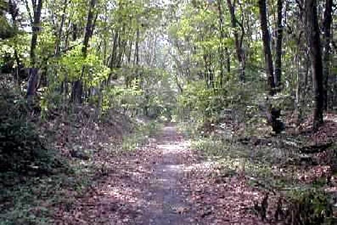West Essex Trail In Cedar Grove