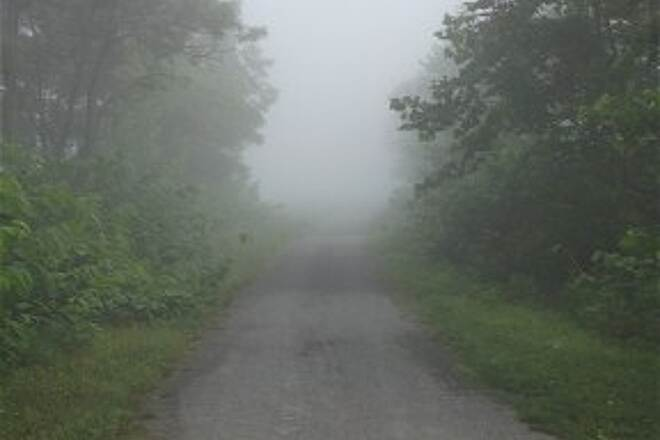 West Penn Trail Early morning fog. Photo taken June 20, 2012
