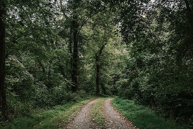 Western Maryland Rail Trail | Maryland Trails | TrailLink