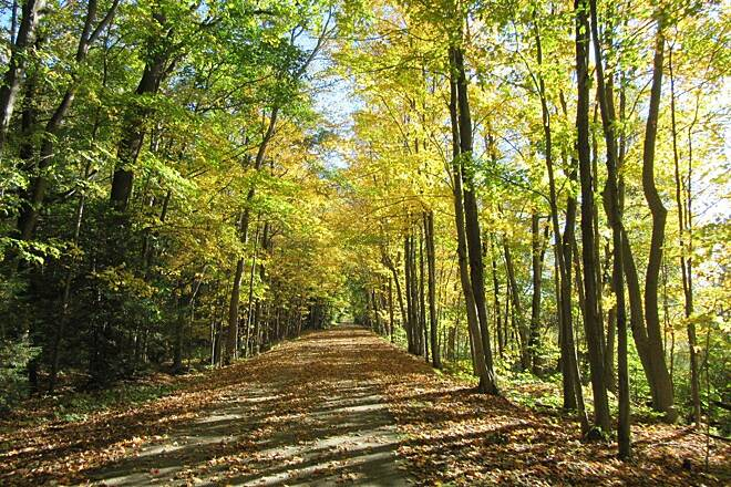 Western Reserve Greenway Leaves leaves on the trail - October 2015