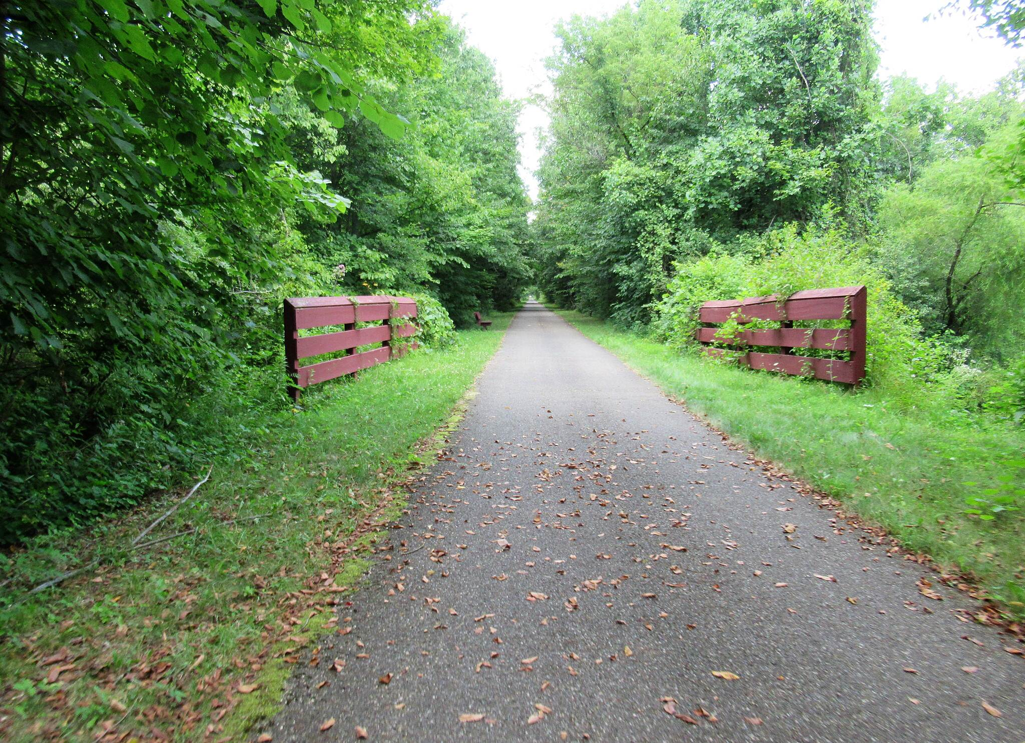 Western Reserve Greenway Trail August, 2019 along the trail. Just North of Sunside trailhead.