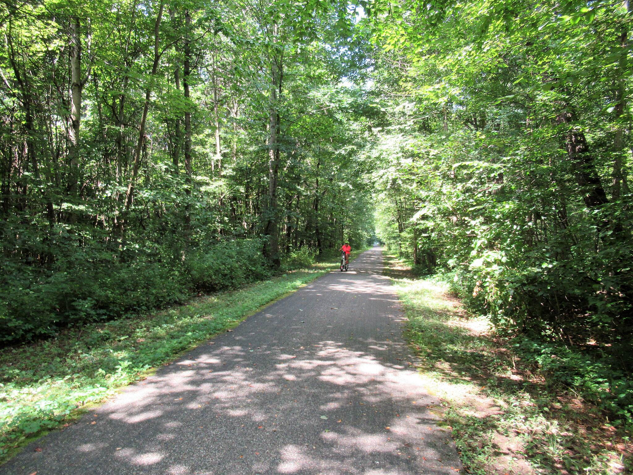 Western Reserve Greenway Well shaded area The trail is well shaded with lots of greenery. August, 2019.