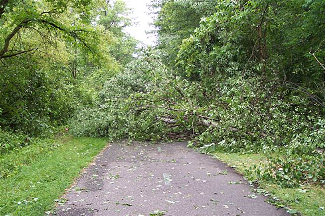 Western Reserve Greenway Western Reserve Greenway, OH A Storm on July 21, 2009 Downed Many Trees On The WWGW