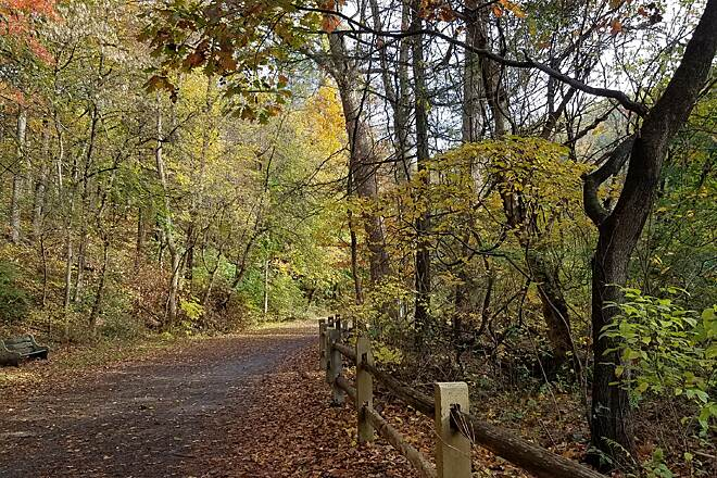 Wissahickon Valley Park Trail System Fall The beauty of the fall color palette