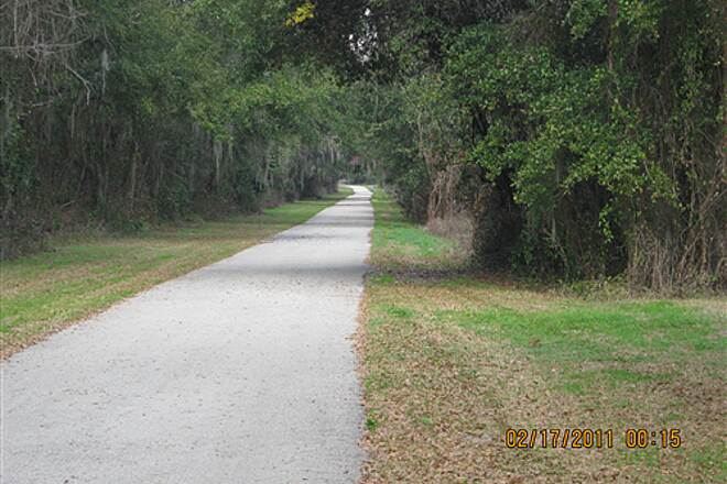 Withlacoochee State Trail   Lush vegetation is everywhere even in winter