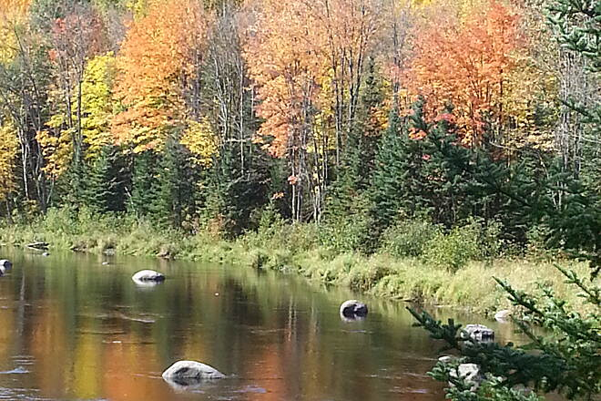 Wolf River State Trail fall 2014