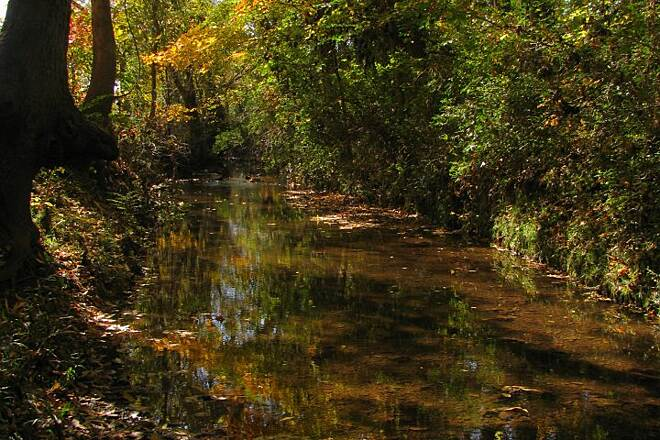Wolftever Creek Greenway Wolftever Creek Photo taken at Veterans park from the Wolftever Greenway.