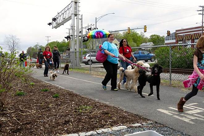 WOW Trail Dog Parade