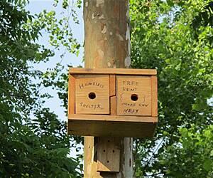 Boone, North Carolina Trails & Trail Maps   TrailLink