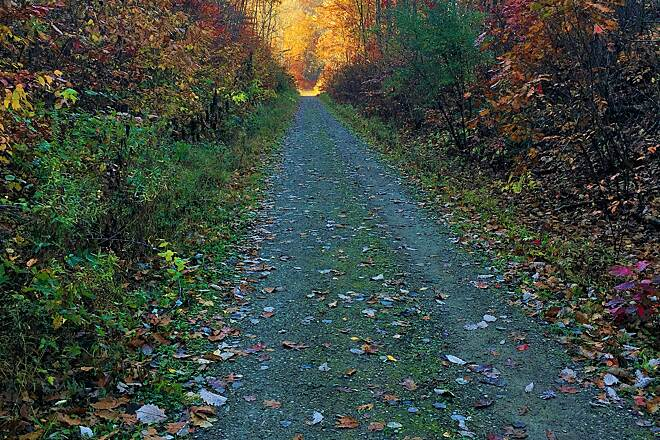 Zoar Valley Trail Autumn-Zoar Valley Trail Going south on the trail just west of Camp Tuscazoar.