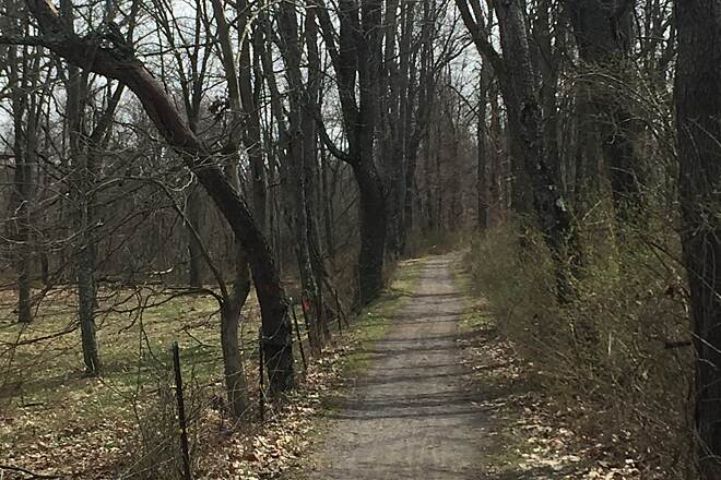 Zoar Valley Trail The Towpath The view of the Zoar Valley Trail heading south along the Tuscarawas River.  March 2017